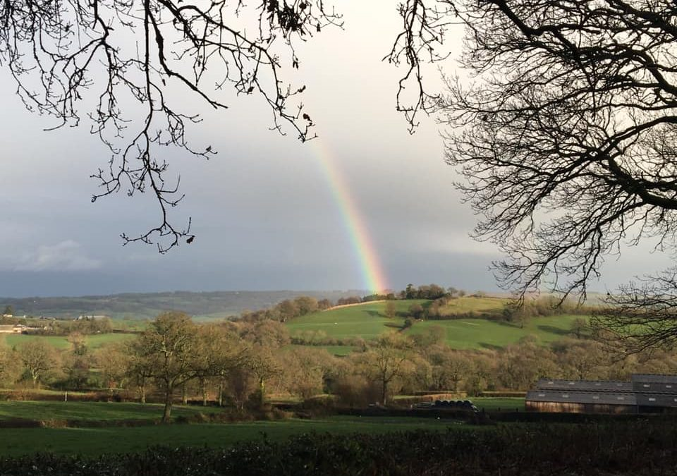 Rower Fort Rainbow – Shortest Day!